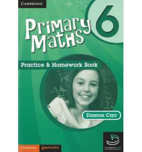 Primary Maths 6 - Practice and Homework Book